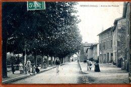 26  CPA De PEYRINS   Avenue Des Platanes    Joli Plan Animé     1908       Bon état - France