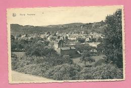 C.P. Hony =  Panorama - Esneux