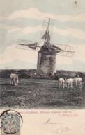 Côte-d'Or - Environs De Beaune - Montceau-Echarnant - Le Moulin ) Vent - Autres Communes