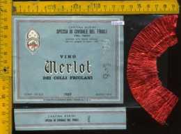Etichetta Vino Liquore Merlot Dei Colli Friulani  1969 Rubini - S. Di Cividale Del Friuli - Etichette
