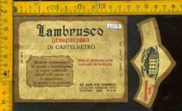 Etichetta Vino Liquore Lambrusco Grasparossa 1979 Vandelli  - Modena - Etichette