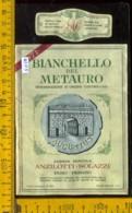 Etichetta Vino Liquore Bianchello Del Metauro 1971 Anzilotti-Solazzi - Fano PS - Etichette