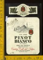 Etichetta Vino Liquore Pinot Bianco 1979 Colli Del Soligo - Solighetto TV - Etichette