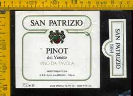 Etichetta Vino Liquore Pinot Del Veneto 1984 S. Patrizio - Calmasino VR (piccolo Difetto) - Etichette