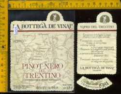 Etichetta Vino Liquore Pinot Nero 1981 La Bottega De Vinai-Calavino TN - Etichette