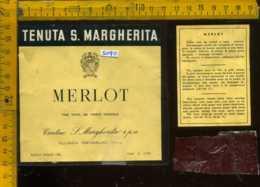 Etichetta Vino Liquore Merlot Tenuta S. Margherita - Portogruaro VE - Etichette