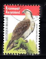 Belgie  2011 Mi Nr  4137, Roofvogel , Visadelaar Aangetekend Gestempeld - Gebruikt
