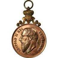 Belgique, Médaille, Léopold II, Festival De La Commune De Baisieux, 1893 - Belgique