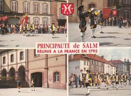 CPM 10x15 . Multi-vues . Principauté De SALM ( Réunie à La France En 1793) SENONES (88) Relève De La Garde De SALM - Senones