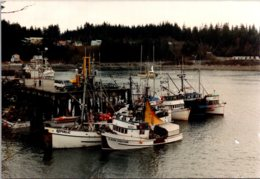 Alaska Yakutat Sitka Sound Dock Fishing Boats - Sitka