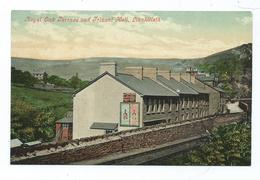 Postcard  Wales Llanhilleth The Royal Oak Terrace And Trinant Hall Railway Line.  Unused Monmouthshire   T.wares - Monmouthshire