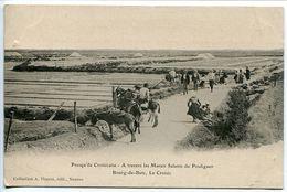 Presqu'île Croisicaise Bourg De Batz Le Croisic A Travers Les Marais Salants Du Pouliguen ( Animée ânes ) - Le Pouliguen