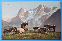 Eiger Und Mönch Von Mürren Aus, Schweiz Svizzera Suisse Switzerland - BE Berne