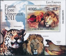 D - [39338]TB//**/Mnh-Comores 2011 - BL2165, Faune, Fauves, Lions. - Raubkatzen