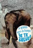 CPM - A Grands Sons De Trompe, Je Te Salue ! - Éléphants