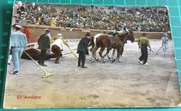 Bullfighting ~ El Arrastre ~ Matadors ~ Bull - Corrida