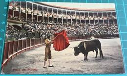 Bullfighting ~ Pase De Muleta ~ Matadors ~ Bull - Corrida