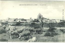 Les Saintes Maries De La Mer Vue Generale Moutons - Saintes Maries De La Mer