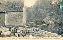 78 - Vallée De Chevreuse - Cernay - Etablissement De Pisciculture - Les Laboratoires - Cernay-la-Ville