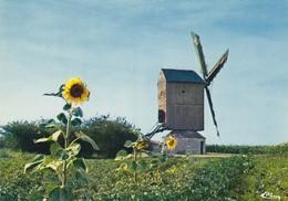 28 Levesville La Chenard Le Moulin (2 Scans) - France