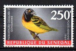 Col15 Sénégal 1968  PA  N° 65 Neuf X MH Cote : 8,00€ - Senegal (1960-...)