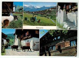 Suisse // Schweiz // Valais // Vercorin - VS Valais