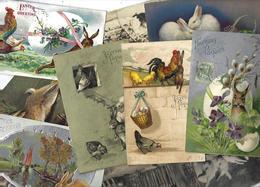 Lot 1840 De 10 CPA Lapins Bunny Dont Position Humaine Fantaisies Déstockage Pour Revendeurs Ou Collectionneurs - 5 - 99 Cartoline