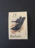 N° 545       Merle  -  15c.  -  Neuf - Barbades (1966-...)