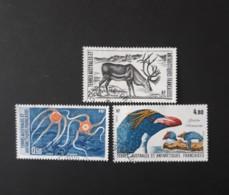 N° 122 à 124       Ophiures  -  Renne  -  Gorfou Macaroni - Tierras Australes Y Antárticas Francesas (TAAF)