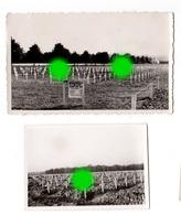 Cimetière Américain Henri Chapelle Où Reposent Les GI's Tués à La Guerre 40/45  - Vers 1948 - Guerre, Militaire