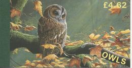 Hiboux -Owls Booklet - Man (Ile De)