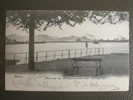 Postkarte 1903 - Bonn - Blick Von Der Rheinpromenade Zum Siebengebirge - Bonn