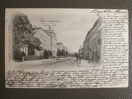 Postkarte 1900 - Gruss Aus Bonn - Platino Reinicke & Rubin - Magdeburg - Bonn