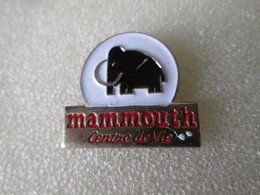 PIN'S   MAMMOUTH   Centre De Vie - Animals