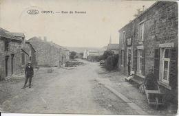 OPONT ..-- Rue De NAOME . 1901 Vers MARCHIN ( Mme Vve RAMLOT - JUAN ) . Voir Verso . - Paliseul