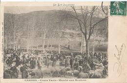 CPA  567 - CAHORS Cours Vaxis Marché Aux Moutons -animations- - Cahors