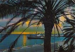 LIBYA - Benghazi 1971 - Sunset In The Harbour - Libya