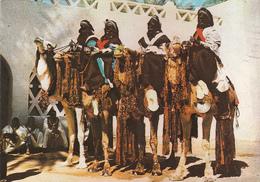 LIBYA - Men From Tuaregh On The Desert's Ship - Libya
