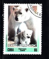 Cuba 2003 Mi Nr 4541, Ijsberen, Polar Bear - Gebruikt