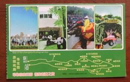 Elephant,giant Panda,safari Area,CN 12 Changsha Ecological Zoo Safari Park Small Size Ticket PSC,perforated Used - Elephants