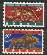 Ruanda-Urundi - 1961 Leopard & Lions 2 MLH *    SG 229-30  Sc 149-50 - 1948-61: Mint/hinged