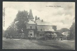 +++ CPA - Le Château De DOYON - Havelange  // - Havelange