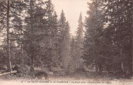 39-SAINT CLAUDE-N°1185-E/0223 - Saint Claude