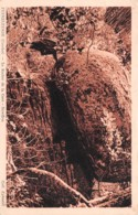 19-PEYRELEVADE-N°1185-F/0137 - Autres Communes