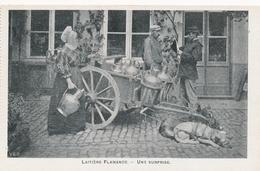 CPA - Belgique - Laitière Flamande - Une Surprise - Andere