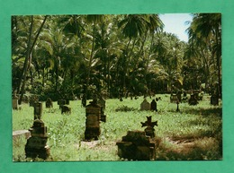 Guyane Française Iles Du Salut Ile Saint Joseph Cimetiere Des Gardiens - Guyane