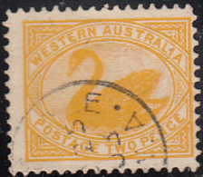 Western Australia 1902-1905 Used Sc 77 2p Swan - 1854-1912 Western Australia