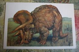 Triceratops Dinosaur  - Rare Old Soviet Dinosaur Serie - Old USSR Postcard 1969 Triceratops - Altri