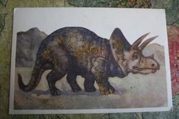 Herbivorous Ceratopsid Dinosaur  - Rare Old Soviet Dinosaur Serie - Old USSR Postcard 1969 Triceratops - Altri