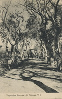 St Thomas  Turpentine Avenue  , V.I.  Edit Lightbourn - Isole Vergini Americane